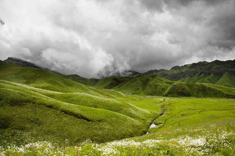 Dzukou Valley, most surreal places in India